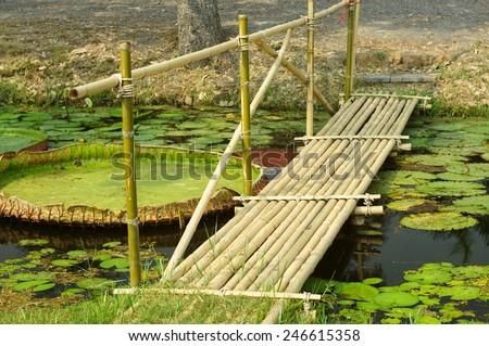 Small bamboo bridge to walk across. - stock photo