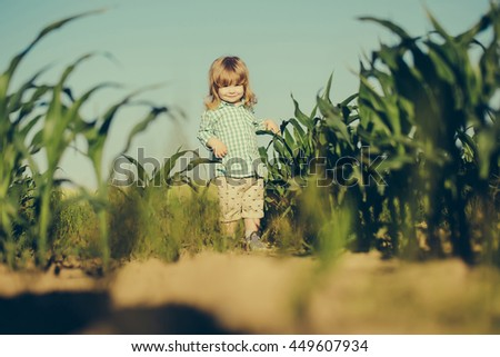 Small boy child with long blonde hair standing among green grass field of corn or maize sunny day outdoor on natural blue sky background in checkered shirt - stock photo