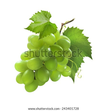 Small bunch of green grapes isolated on white background as package design element - stock photo