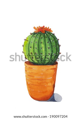 Small cactus , watercolor painting. - stock photo