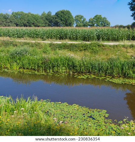 small canal in an agricultural landscape in the netherlands - stock photo