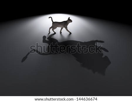 Small cat with a big dream- aspirations concept - stock photo