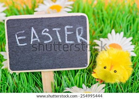 Small chicken on the green grass and blackboard with copy-space - stock photo