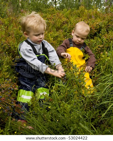 Small children (1 and 3 years old) sitting in a forest picking bilberries (European blueberries). - stock photo
