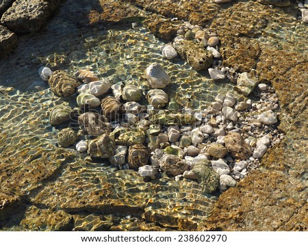 small clear sea lake on the stone beach          - stock photo