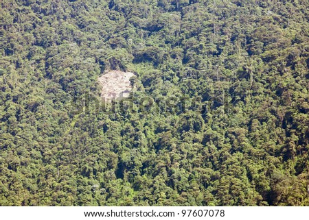 Small clearing made by colonists in tropical rainforest, Ecuador - stock photo