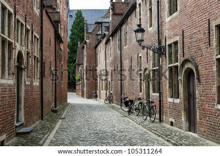 Small cobble-stone street with traditional flanders houses in Grand beguinage of Leuven - stock photo