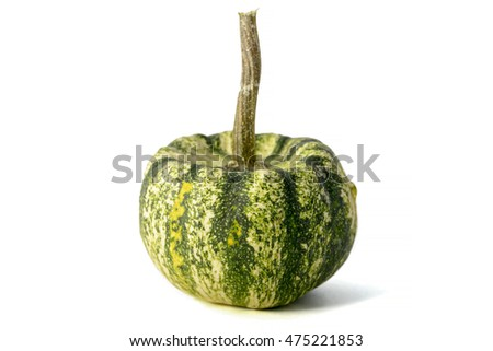 small decorative green pumpkin on white background