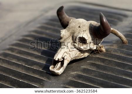 Small decorative skull - stock photo