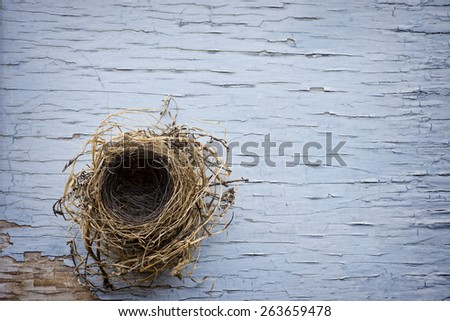 Small empty bird nest, looking down into it, sitting on weather wood with peeling paint - stock photo
