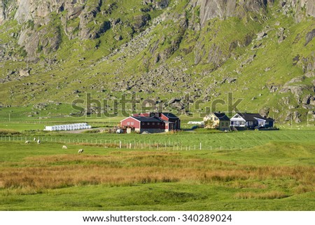 Small farm on Lofoten Islands during summer day, North Norway - stock photo
