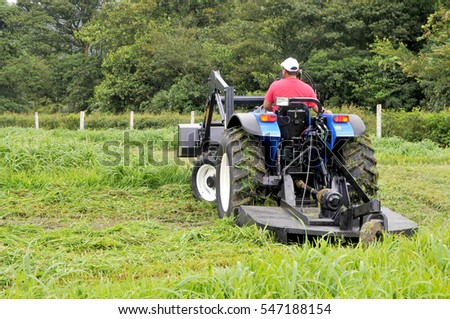 Small farm tractor bush hogging on a grass field