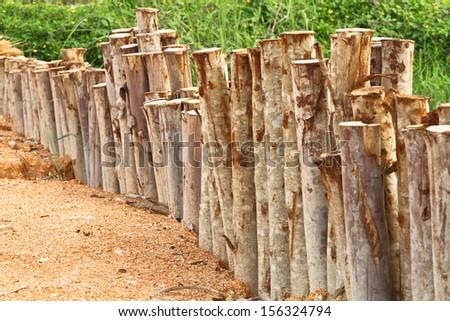 Small fence of eucalyptus trunk - stock photo