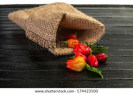 Small fine chili in a bag - stock photo