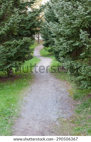 Small footpath in park