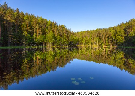 Small forest lake in National park Narachanski (Belarus)