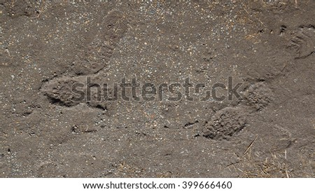 small granite gray and brown old gravel to dirt and dents clear marks from shoes