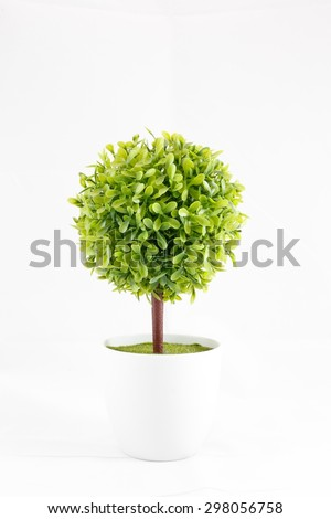Small green decorative tree growing in a cement pots with isolated white background - stock photo