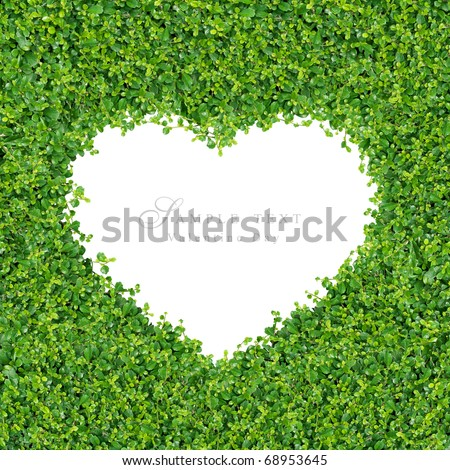 Small green plants and grass A heart shape, on on white background isolated. - stock photo