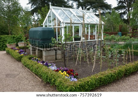 Small Greenhouse Water Tank English Vegetable Stock Photo Royalty