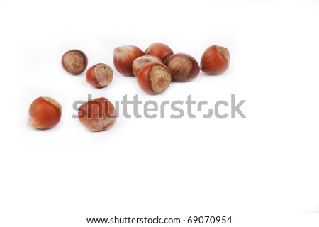 Small group Hazelnut lies on a plate on a white background. A shot horizontal, focus in the shot center - stock photo