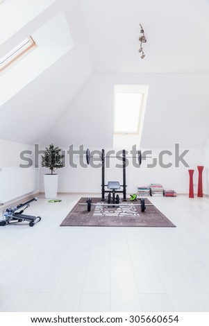 Small gym arranged in white room at home - stock photo
