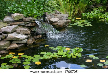 small homemade pond - stock photo