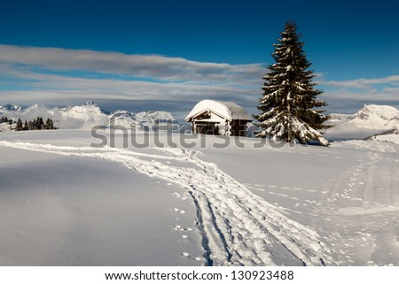 Small Hut and Fir Tree on the Top of the Mountain in French Alps