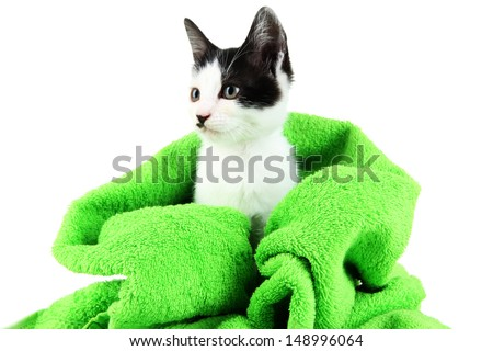 Small kitten in green towel isolated on white - stock photo