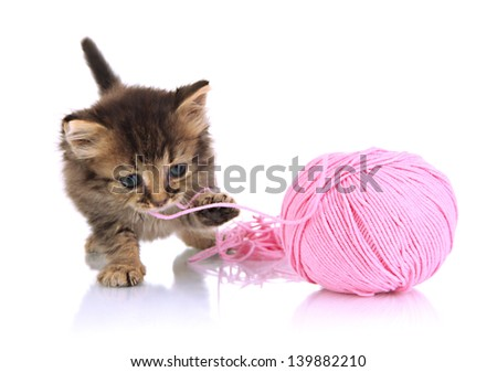Small kitten play with yarn for knitting isolated on white - stock photo