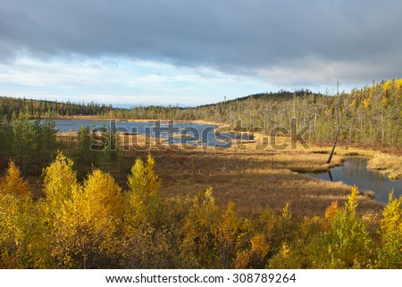 Small lake on the tundra. Autumn landscape. Lapland.