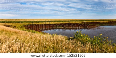 Small Lake Surrounded by Grass and Corn - stock photo