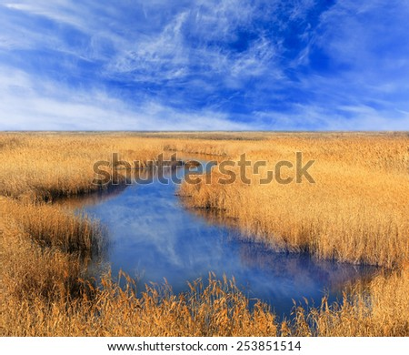 Small lake under nice sky - stock photo