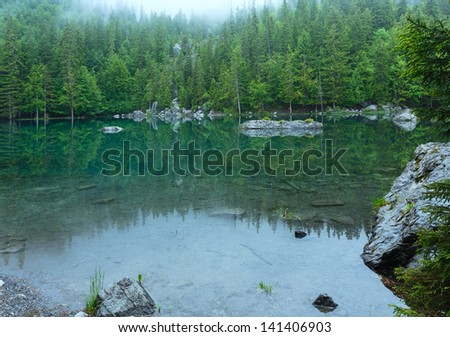 Small mountain forest lake in France Alps (misty summer morning).