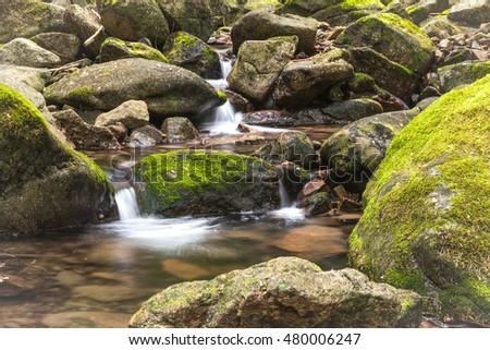 Small mountain stream at the east end of Coeur d'Alene Lake in Idaho.
