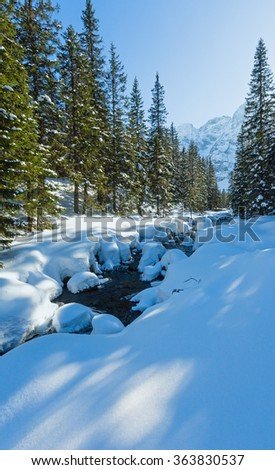 Small mountain stream with snow drifts at the edges