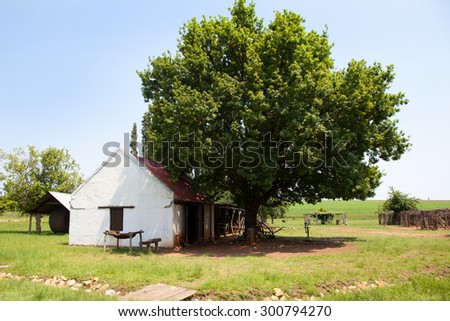 Small old farm house under a tree - stock photo