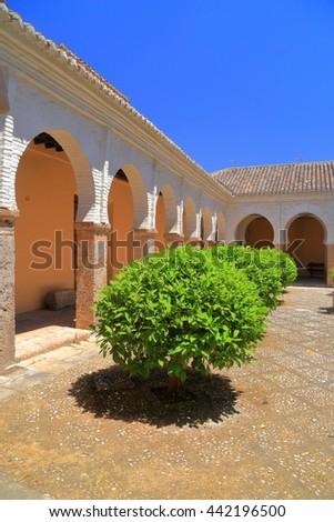 Small orange trees aligned inside the Patio of San Salvador church, Granada, Andalusia, Spain - stock photo