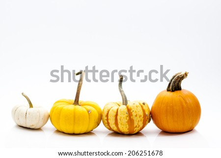 Small Ornamental Gourds for Autumn - stock photo
