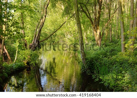 Small peaceful canal surrounded by green spring bushes in Netherlands