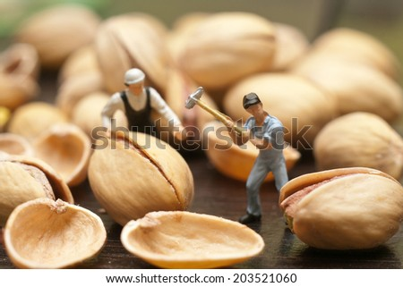 Small people split the pistachios. The concept of cooking. - stock photo
