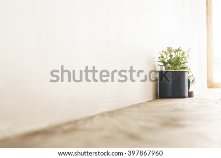 small plant bucket on wooden table bar and white wall with copyspace