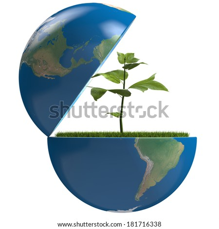 Small plant growing inside opened planet Earth, isolated on white background, concept of ecology, symbol of new life. Elements of this image furnished by NASA - stock photo