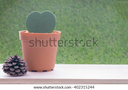 Small plant in heart shape in brown flower pot on wooden table and grass wall background and dry pine tree fruit/Small plant in heart shape flower pot and dry pine tree fruit - stock photo