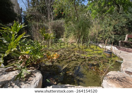 Small pond in garden with a wooden bench - stock photo