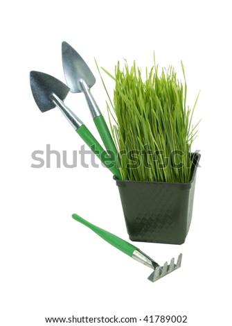 Small pot of green grass representing a private garden with tools - path included