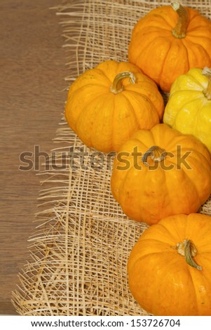 small pumpkin on the wooden background