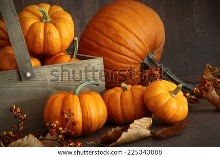 Small pumpkins with wooden box on table - stock photo
