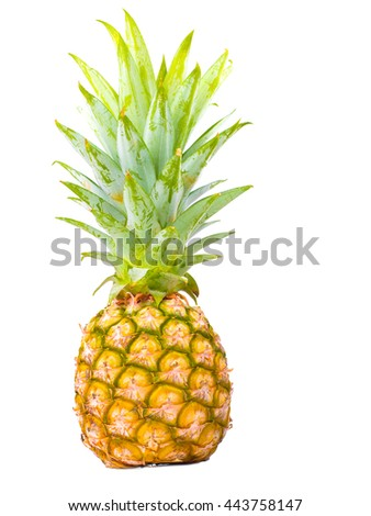 small ripe pineapple isolated on white background