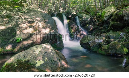 Small river in Alps woods with water flowing.